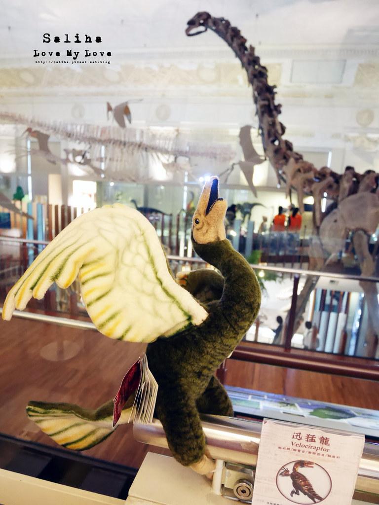 台北恐龍博物館台北車站台大醫院站負進親子餐廳咖啡廳下午茶雨天景點 (1)