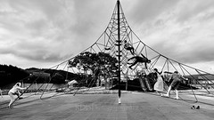 Maidstone Park Playground 03