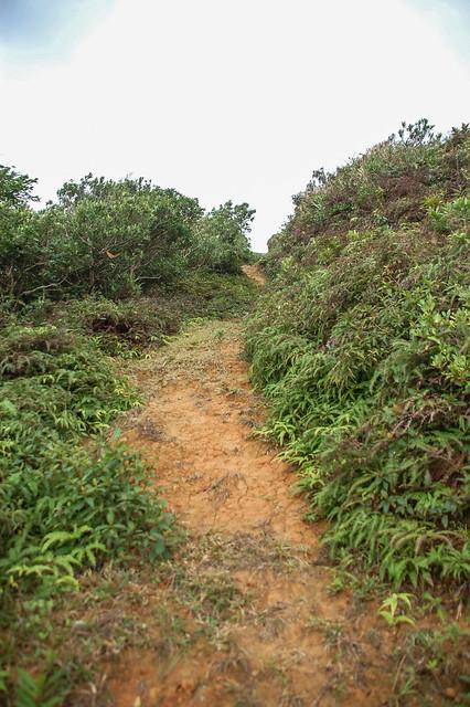 九棚山登山步道 5
