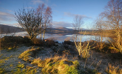 Lingering Frost at Clatteringshaws