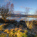Lingering Frost at Clatteringshaws by andy_AHG