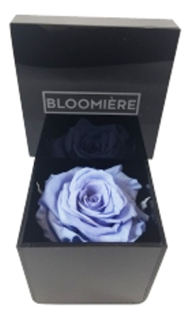 Lavender Blue Preserved Infinity Rose in Black Acrylic Box