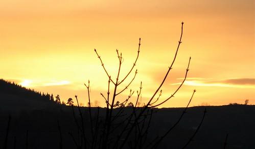 """Déficoncours """"silhouettes hivernales"""" - les participations 46516453742_d49c2d881a"""