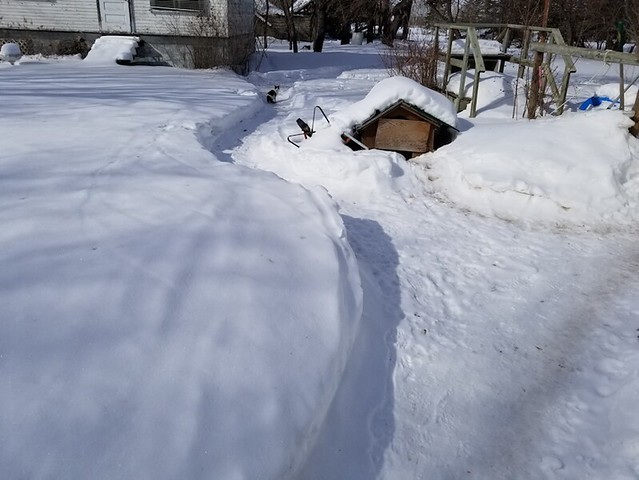 20190311.snow.clearing.inner.yard.byhouse1
