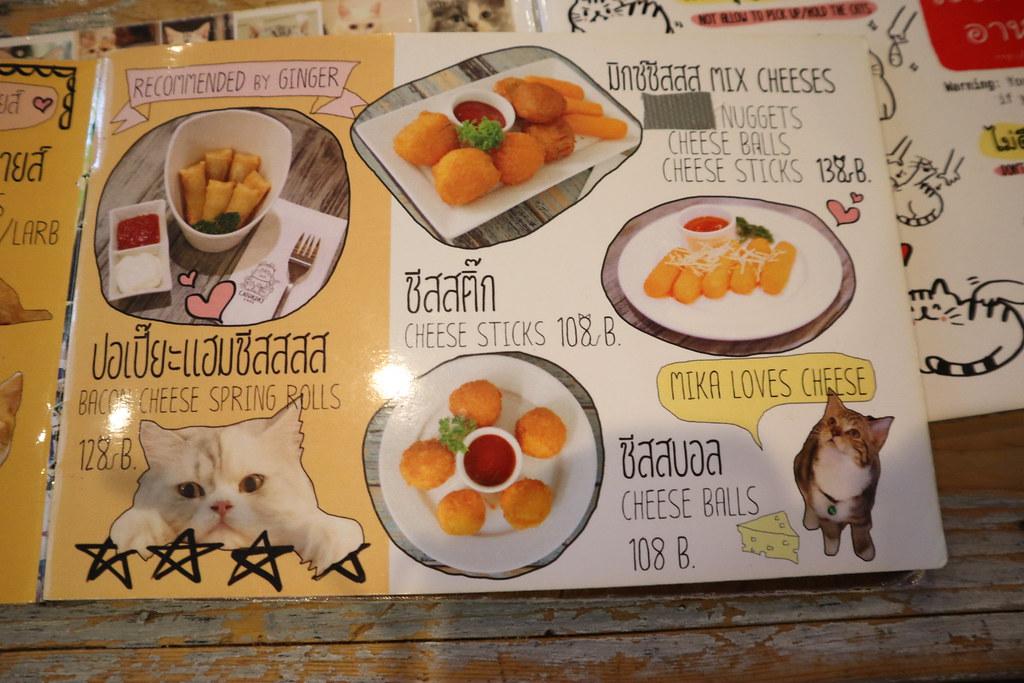 Caturday cat cafe (13)