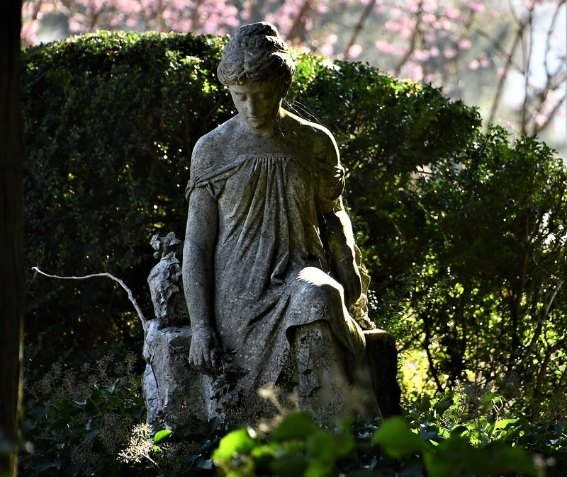 Solothurn cemetery 23.03 (4)