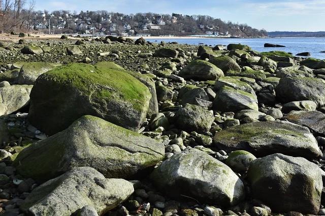 Garvies Point, Long Island