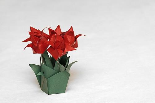 Origami Jardim de Tulipas - Tulip Garden (Isa Klein)