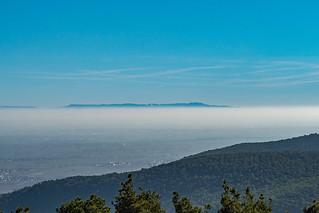 Blick von der Hohen Loog über die Rheinebene zum Schwarzwald mit Hornigsrinde