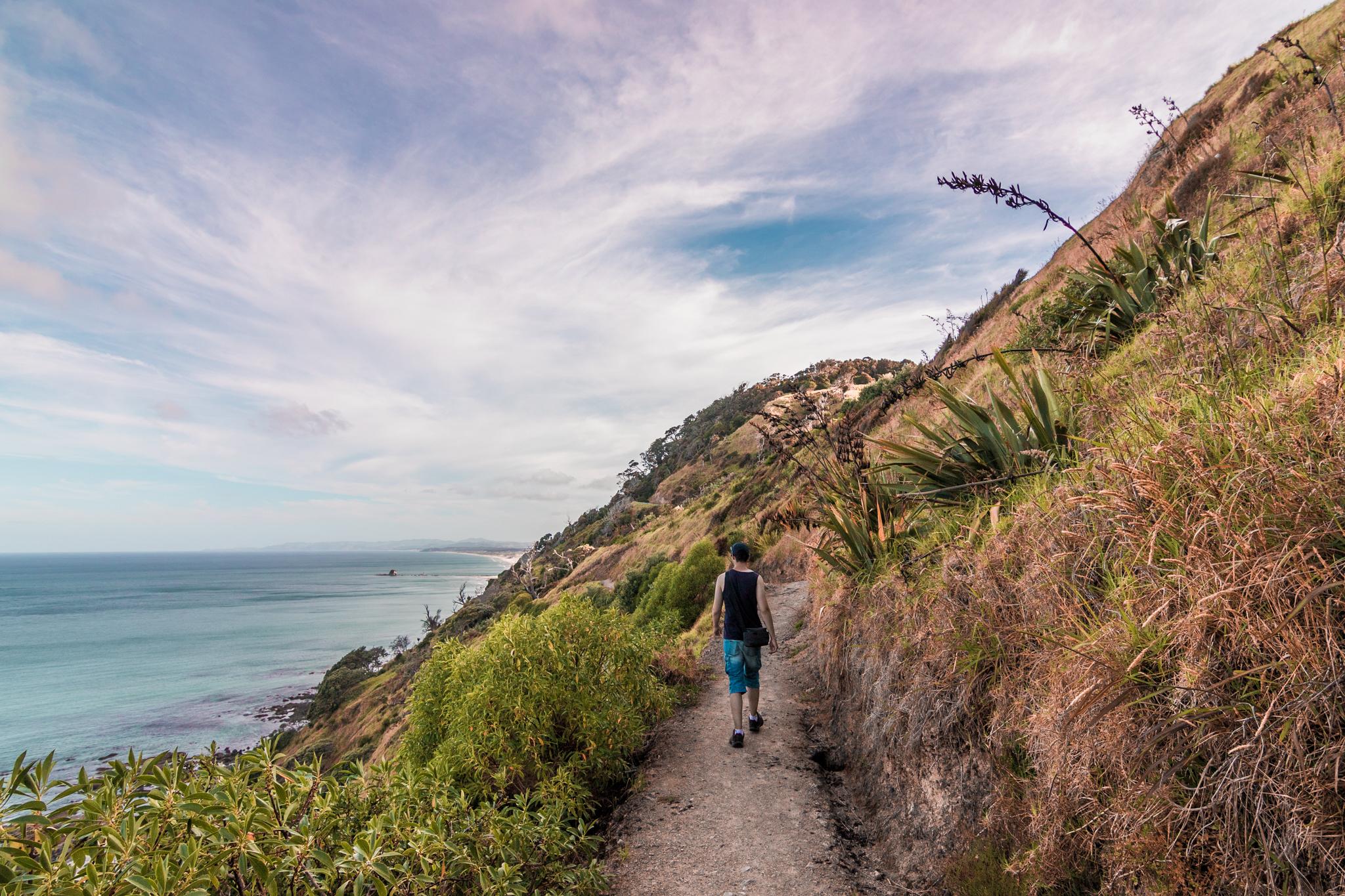 Mangawhai Cliff walk-22