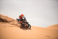 KTM 790 Adventure R 2019 - 16