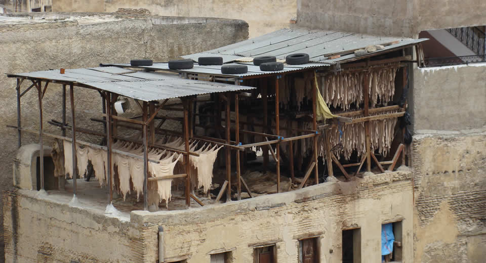 What to see in Fez, Morocco? Tanneries Fez | Mooistestedentrips.nl
