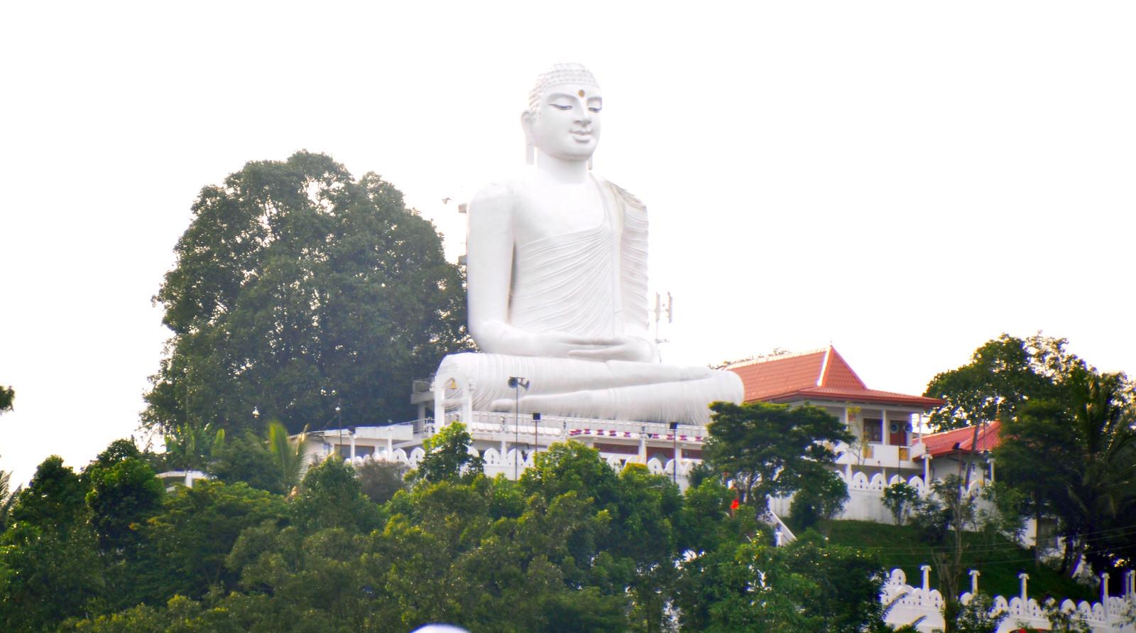 Kandy en un día, Sri Lanka kandy en un día - 46341678014 cf521cdb4b h - Kandy en un día, Sri Lanka