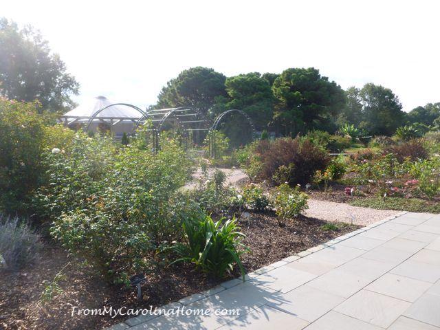 NC Raulston Arboretum at FromMyCarolinaHome.com