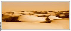 Dunes de l'erg Amatlich (Adrar, Maritanie)
