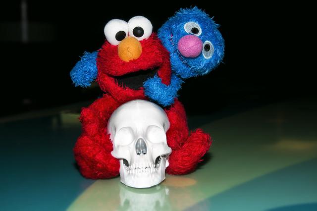 Skull buddies