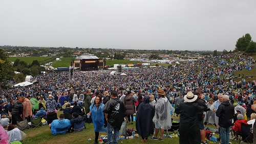 The crowd at the Napier Phil Collins Concert