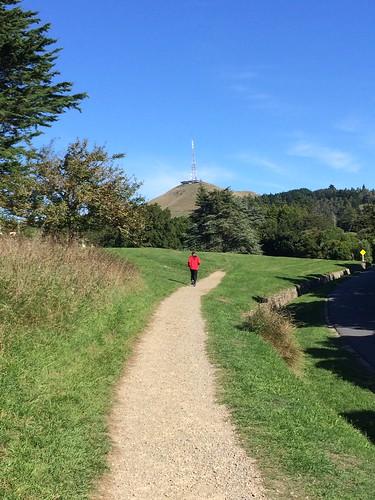 NZ CHASMERE PARK RUNNING