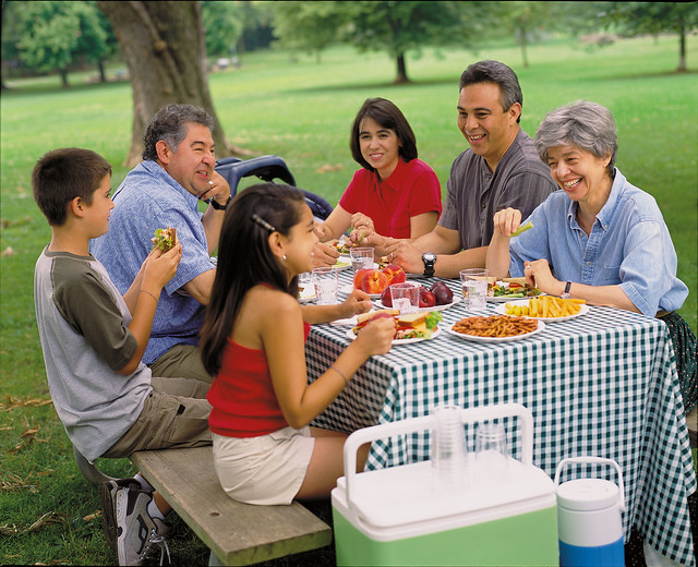 A family having a picnic at a park
