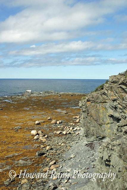 Gros Morne National Park (621)