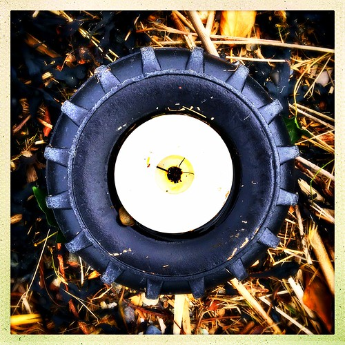 A washed up wheel