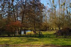 Jardin à Roy-Boissy