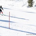 Alpine Races I & II Feb 2019