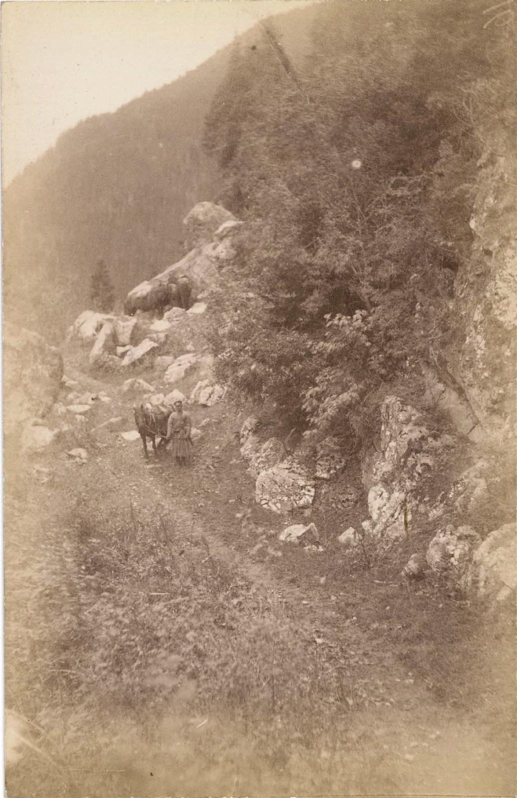 23. Долина реки Каркара