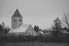 chablis - Photo of La Chapelle-Vaupelteigne