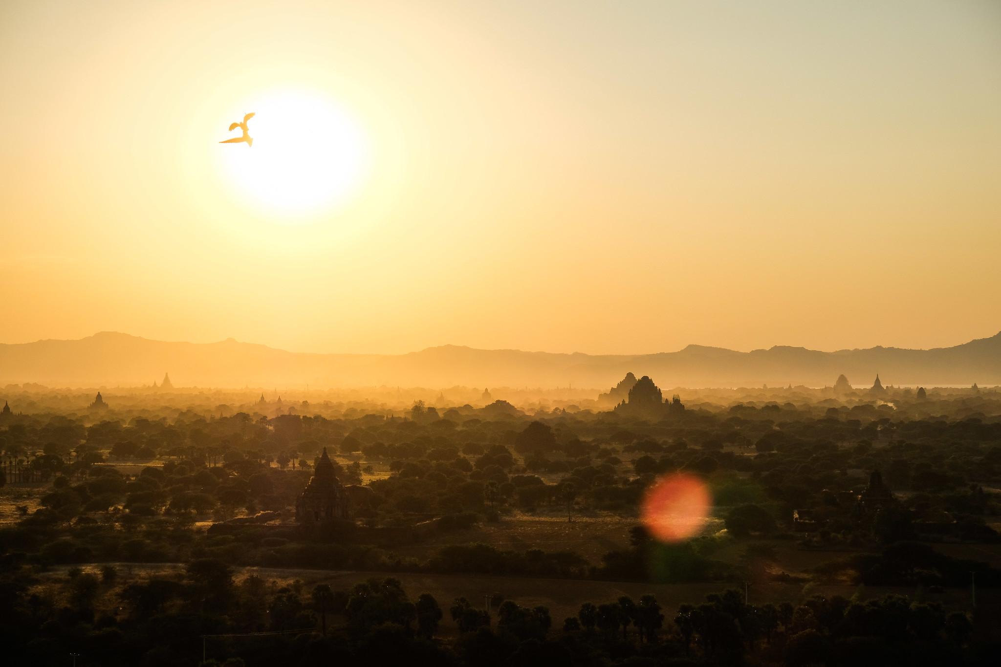 Bagan Ebene mit Vögeln