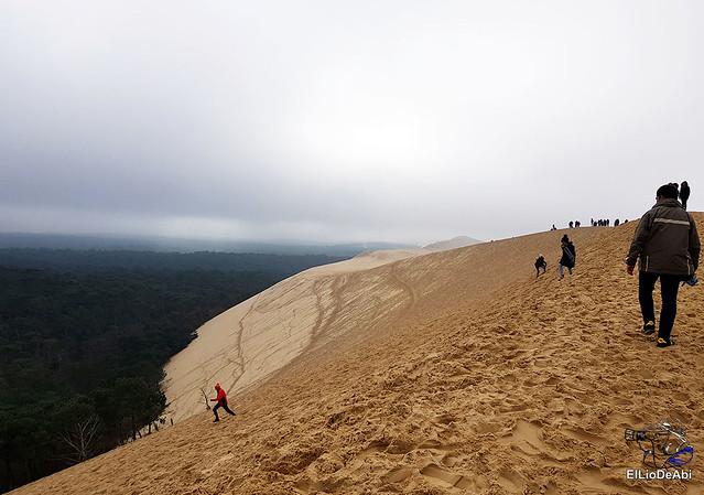 Duna de Pilat, la duna más grande de Europa 11