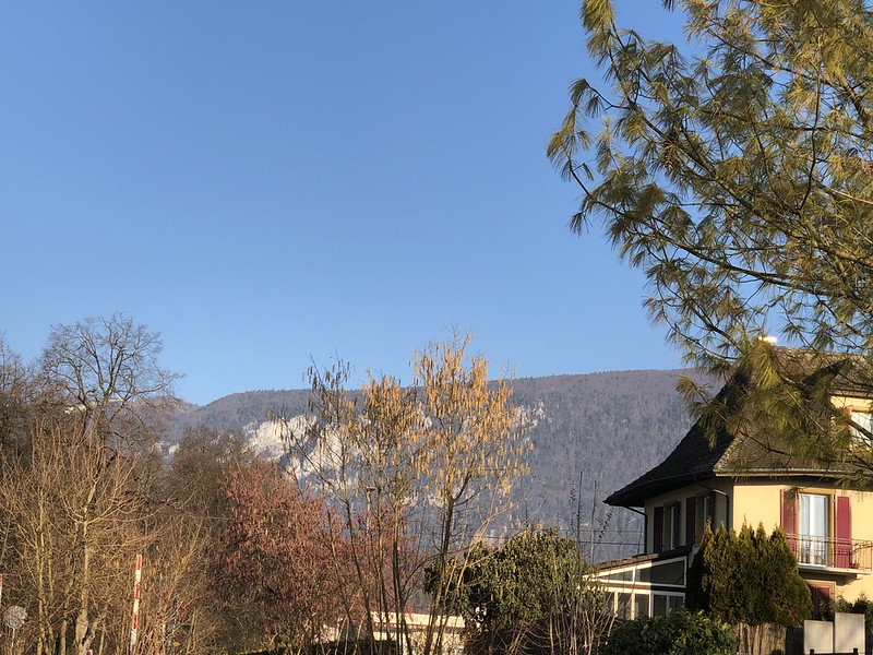 Jura in the mornng