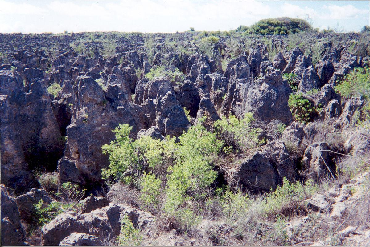 बंजर होती जमीन (फोटो साभार: विकिपीडिया)
