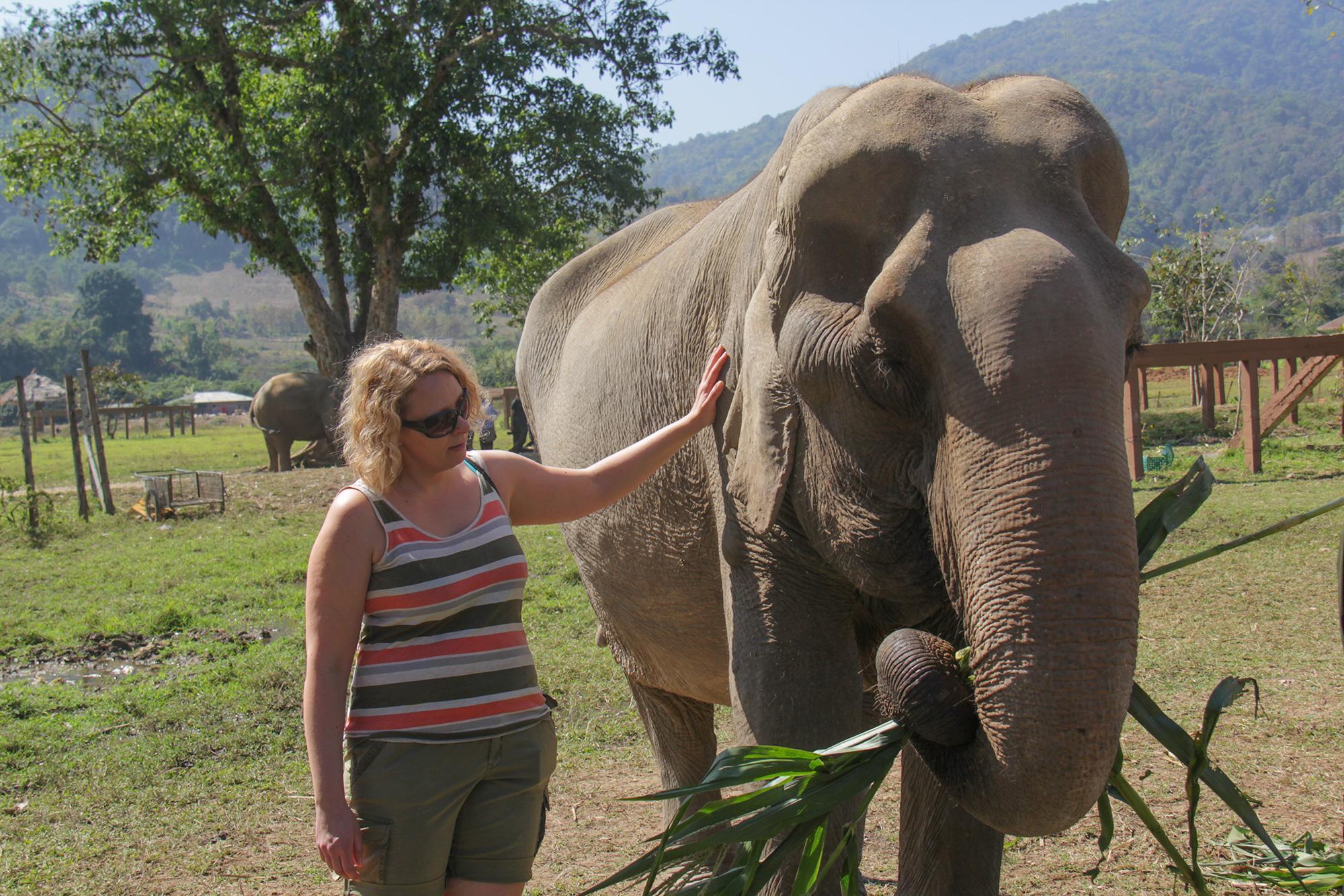 Elephant_Nature_Park_Arnajanorsu