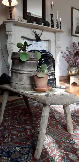 Krukje vloerkleed pepermuntplantje