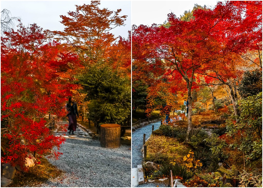 kyoto-tenryu-ji-temple-autumn-alexisjetsets