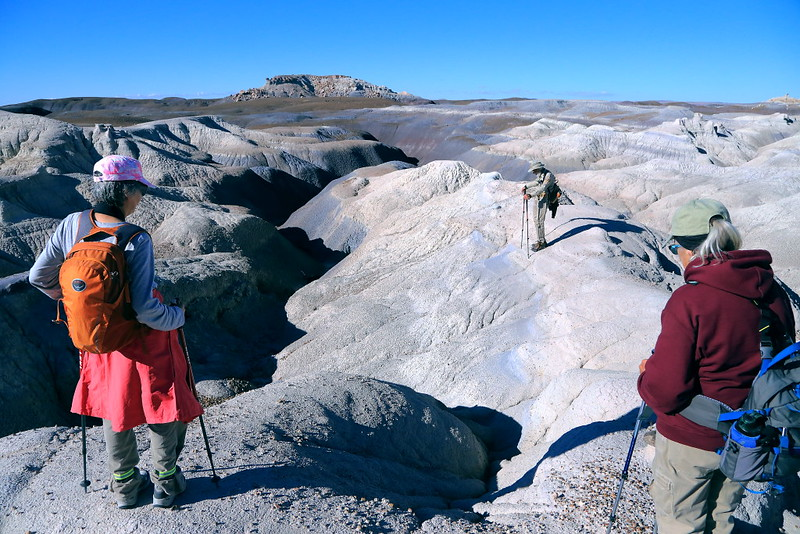 IMG_7106 Hikers in Badlands, Petrified Forest National Park