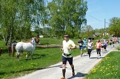 Fandíte běžecké turistice? Navštivte koncem dubna Brniště