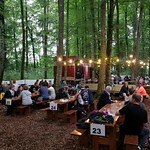 Waldfest 2017