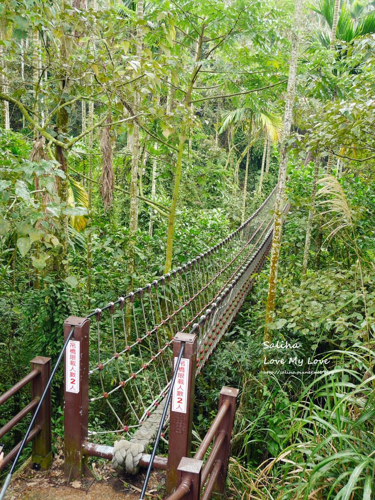 雲林古坑一日遊景點推薦華山小天梯情人橋 (12)