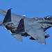 "DSC_6491 copyright: ""USAF McDonnell Douglas F-15E Strike Eagle"" by columbia107"