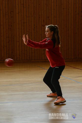 20190316 SV Motor Barth - Laager SV 03 Handball wJD (15).jpg