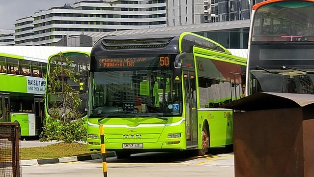 SMB3143L on SBS Transit Bus Service 50