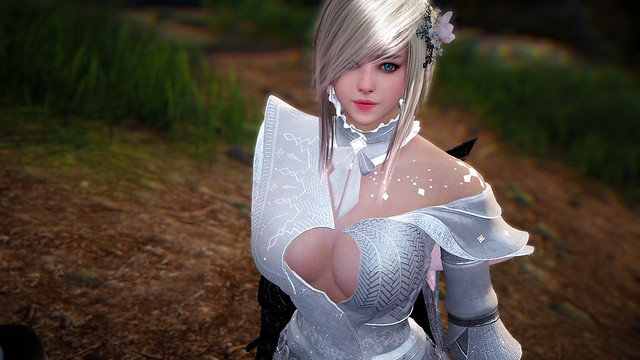 Black Desert Online - Window of Opportunity