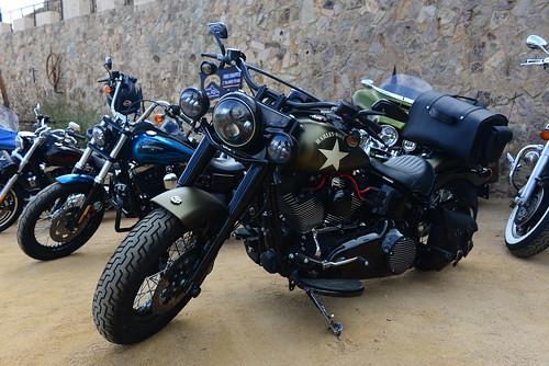DAV_6075 Harley Davidson