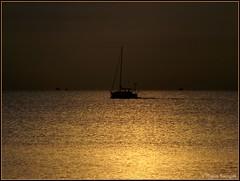 Sortie matinale en mer - Photo of Saint-Laurent-de-la-Salanque