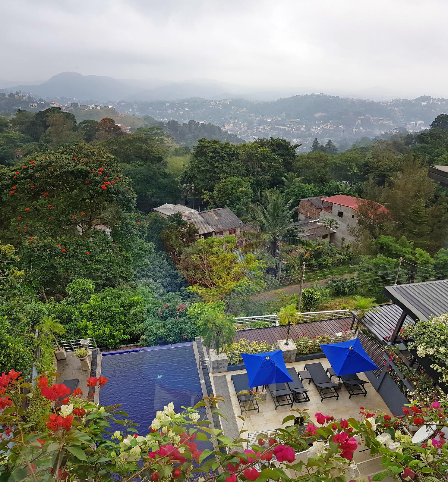 Kandy en un día, Sri Lanka kandy en un día - 32123795517 a6891b6f6d h - Kandy en un día, Sri Lanka