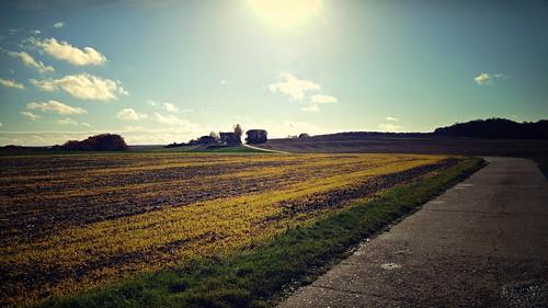 Mainfränkische Landschaft bei der Sternwarte Hettstadt