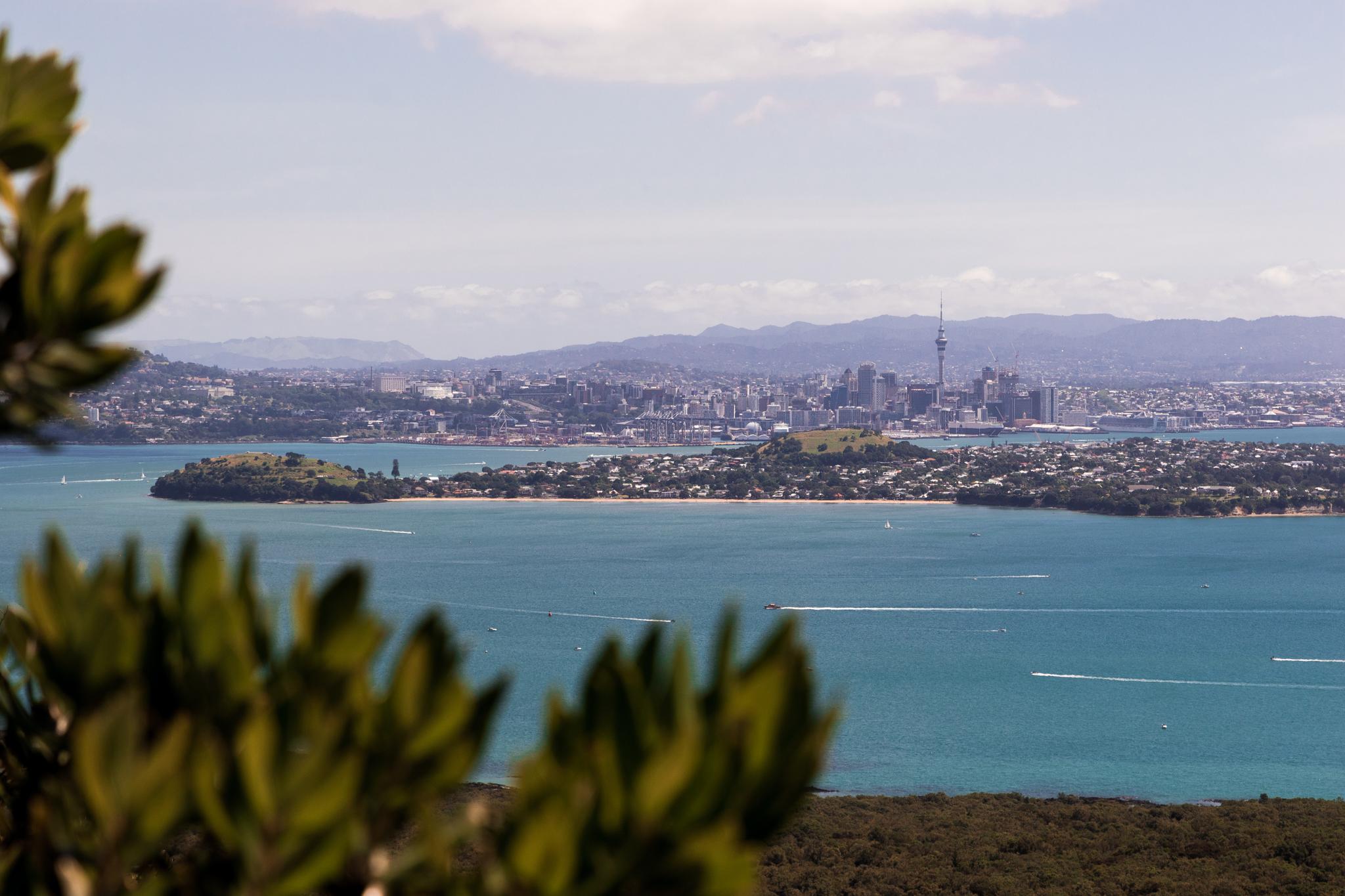 Auckland 3-3