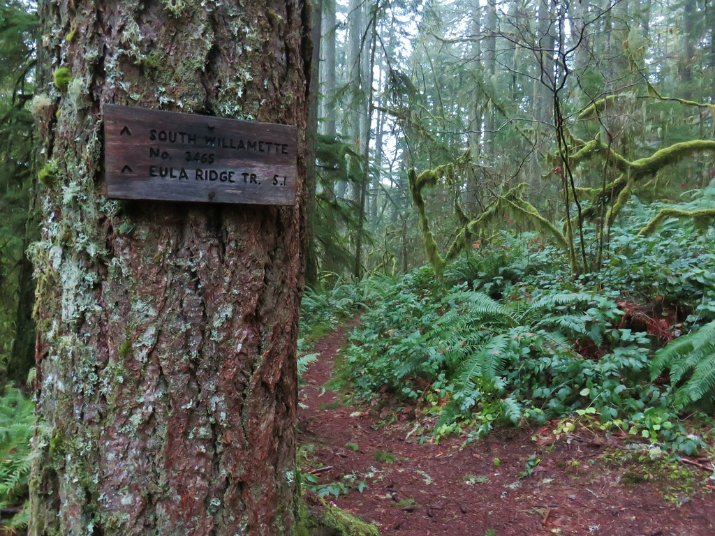 Hardesty Trail junction with the South Willamette Trail
